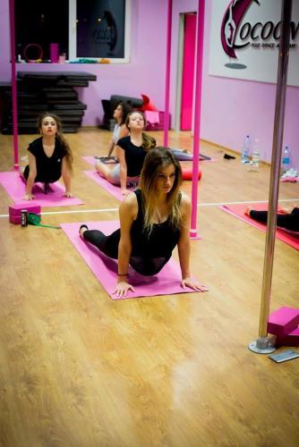 Cocoon Pole Dance Academy 497